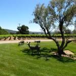 Brassfield Winery